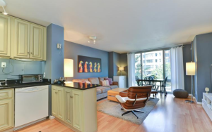 living room and kitchen in Foggy Bottom unit